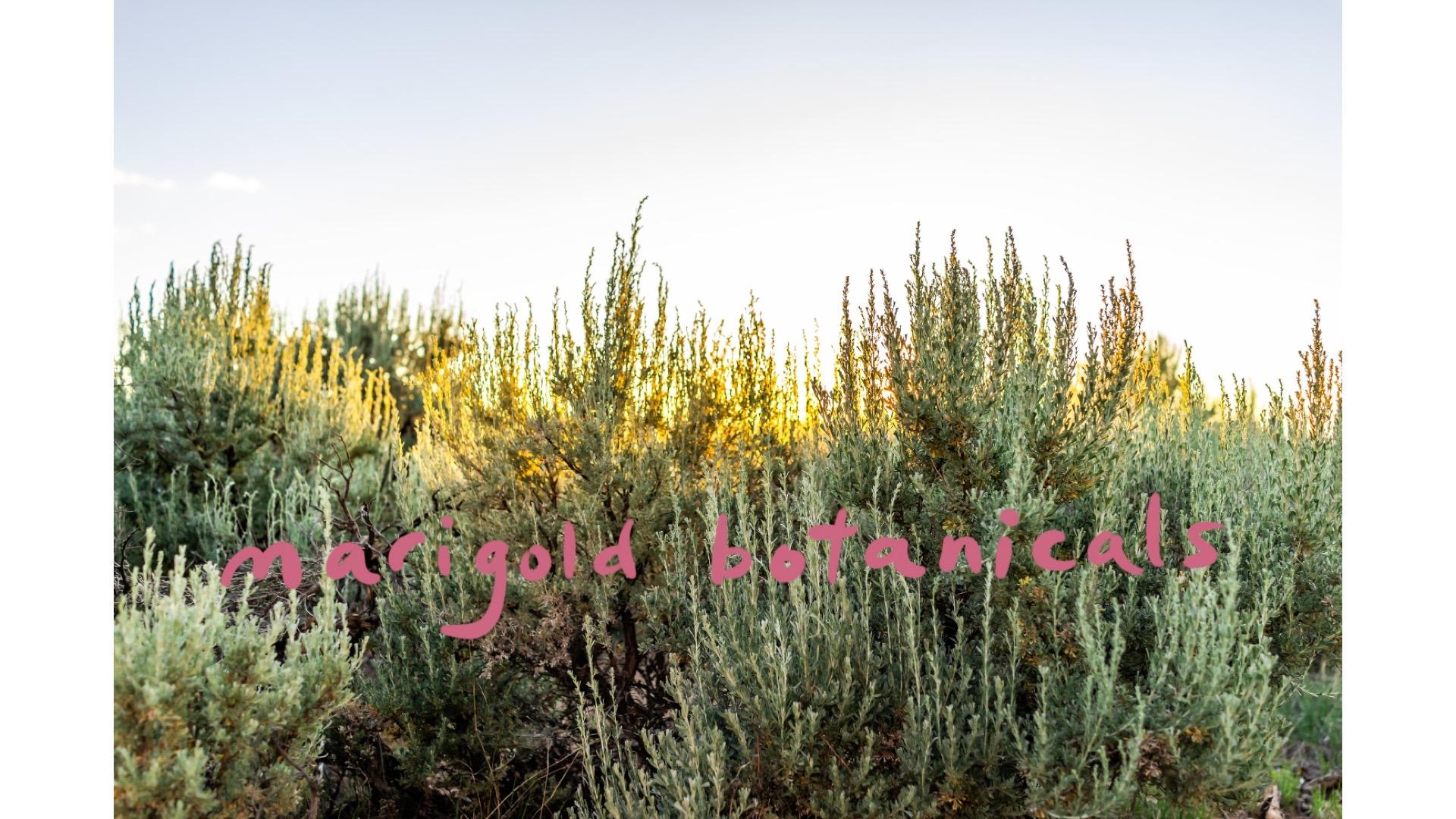 Marigold Botanicals