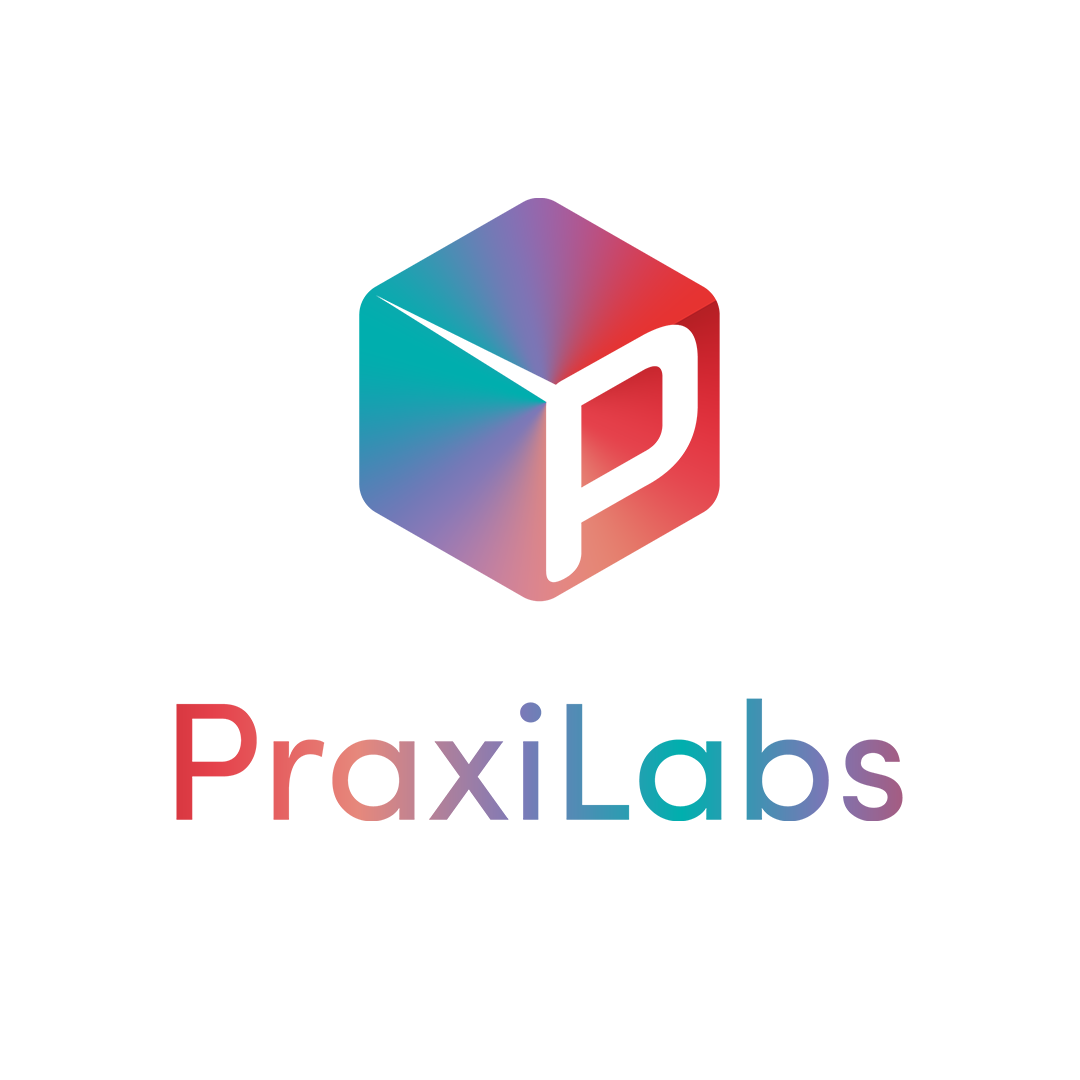 PraxiLabs | Social Entrepreneurship Track