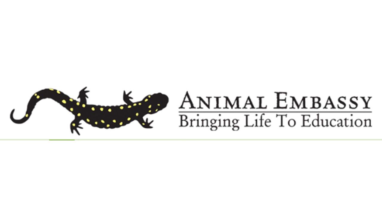 Animal Embassy