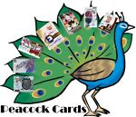 Peacock Sports Cards