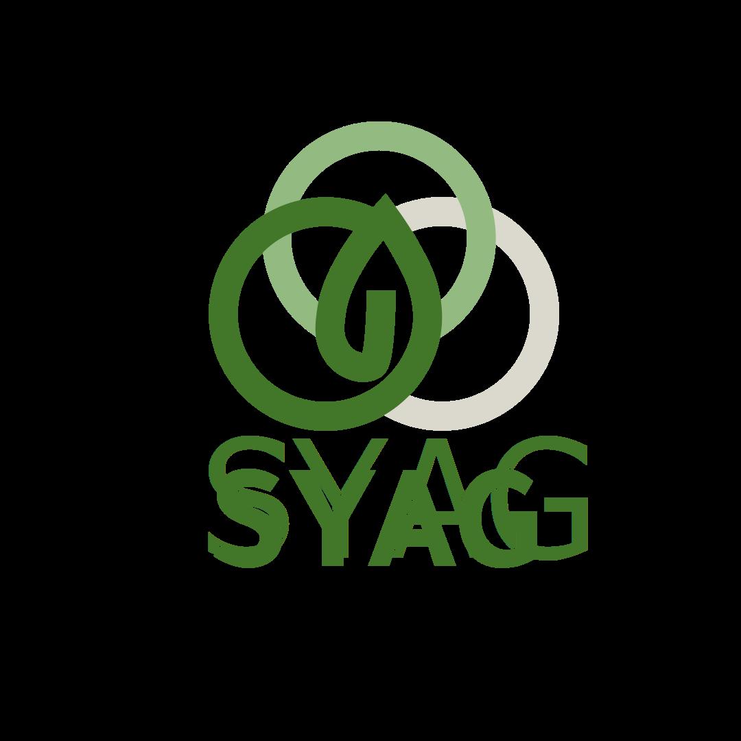 SYAG | Social Entrepreneurship Track