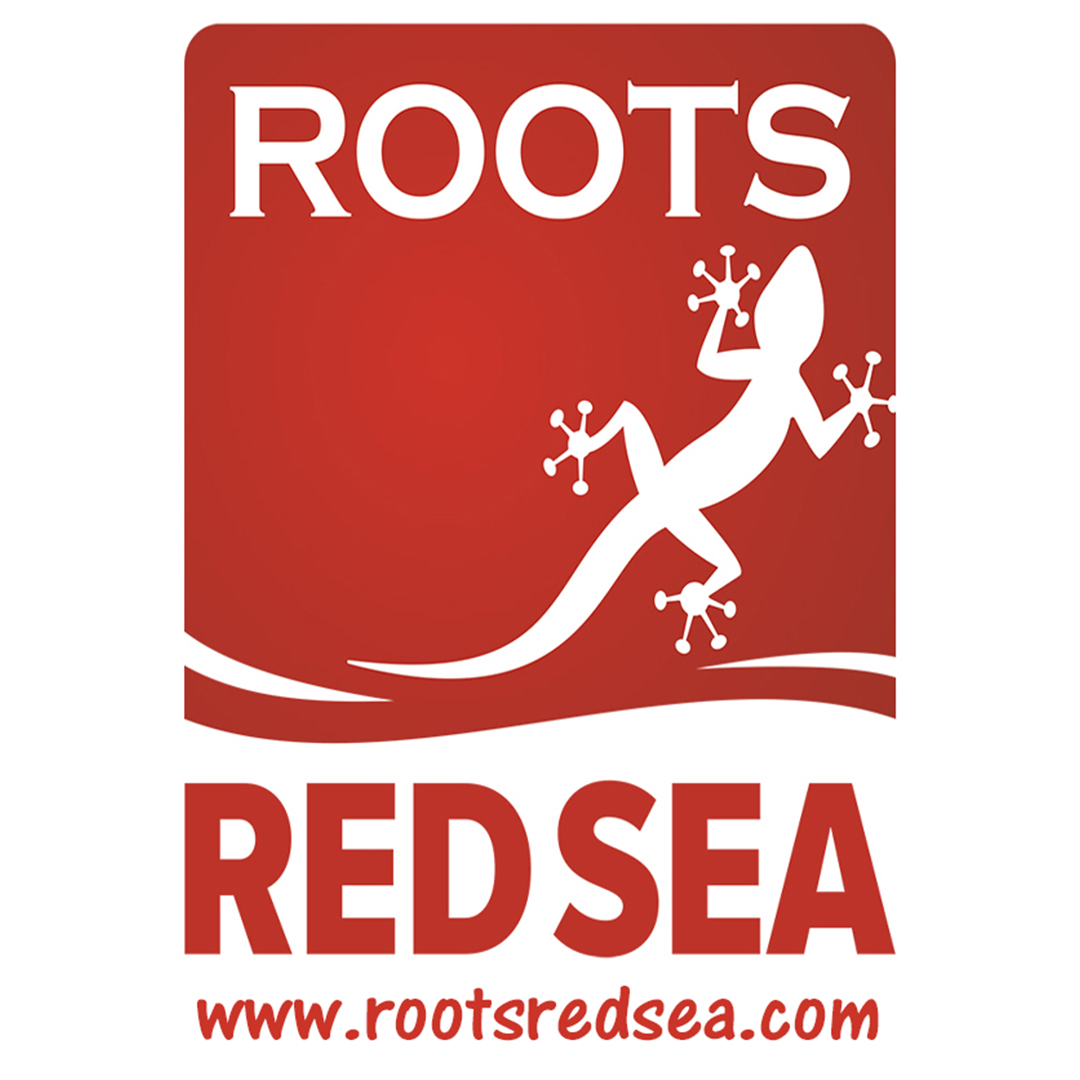 Roots Red Sea