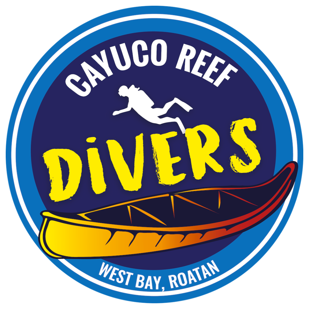 Cayuco Reef Divers