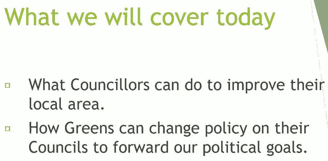 Be a Green councillor