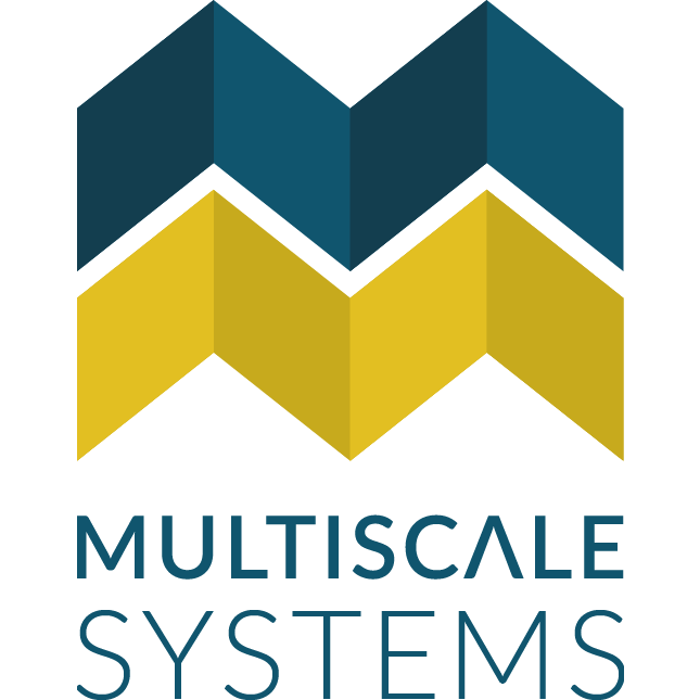 Multiscale Systems