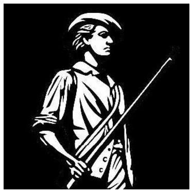 The Liberty Sentinel
