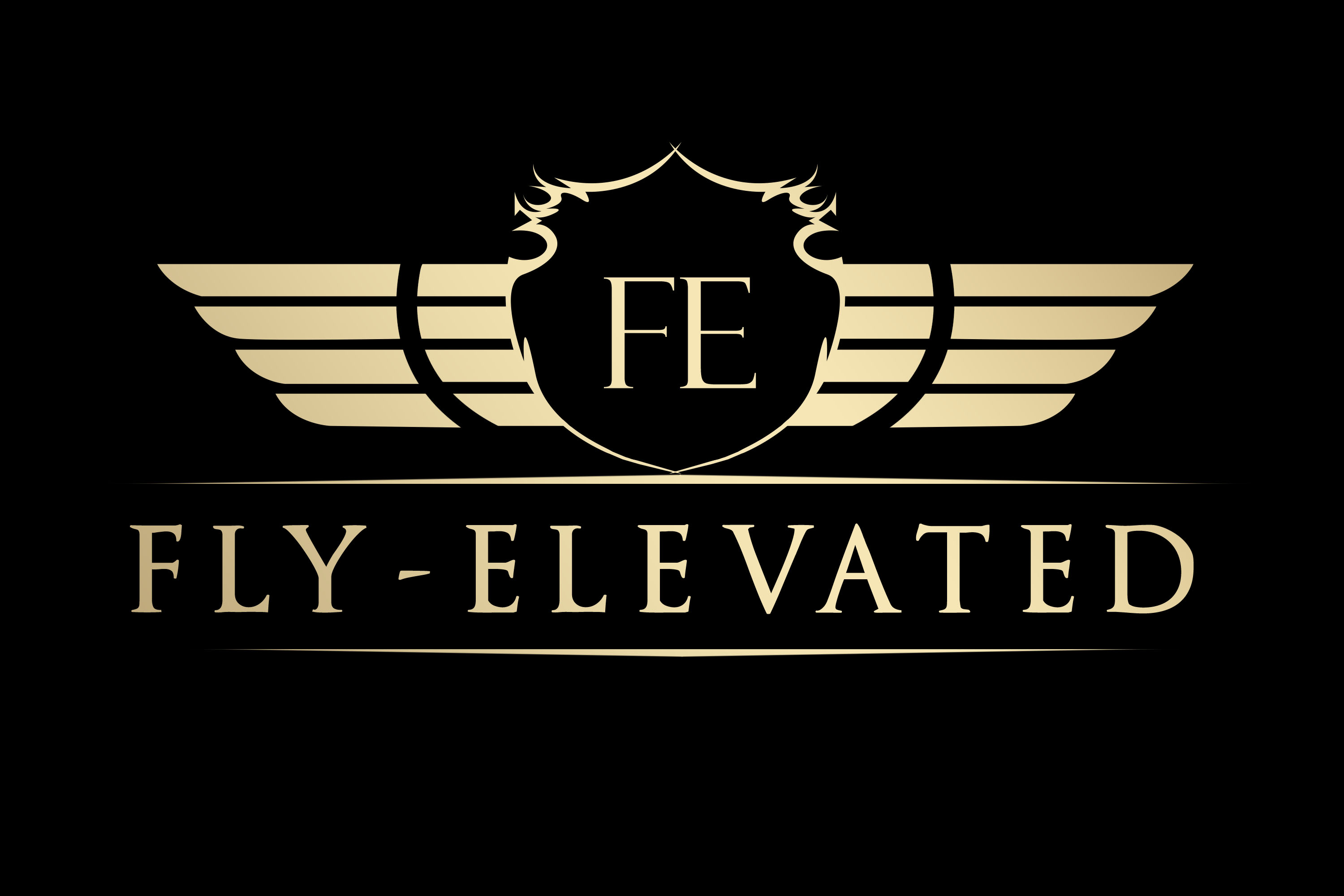 Fly-Elevated