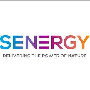 #010 | Senergy