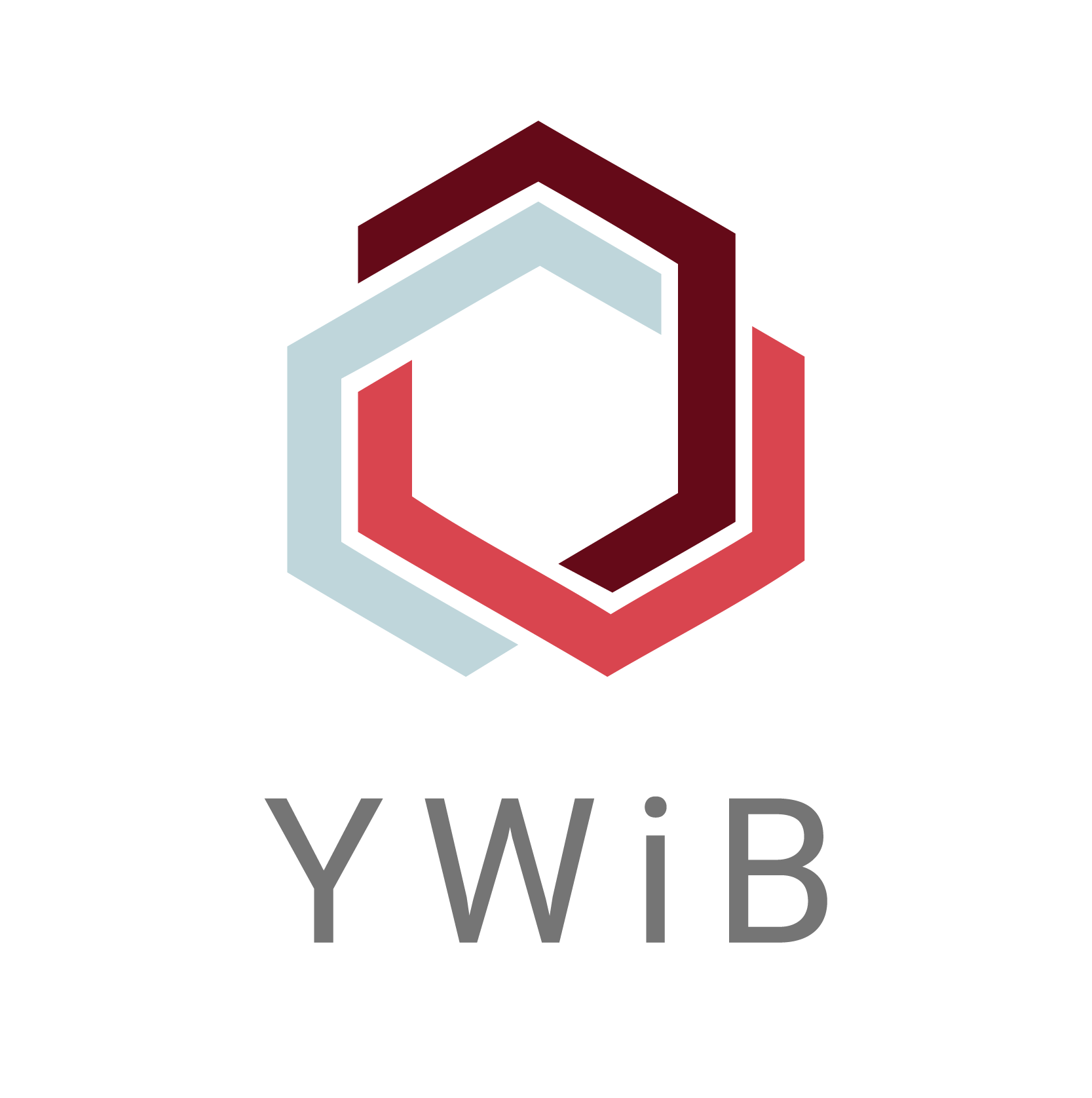 YWiB- Young Women in Business