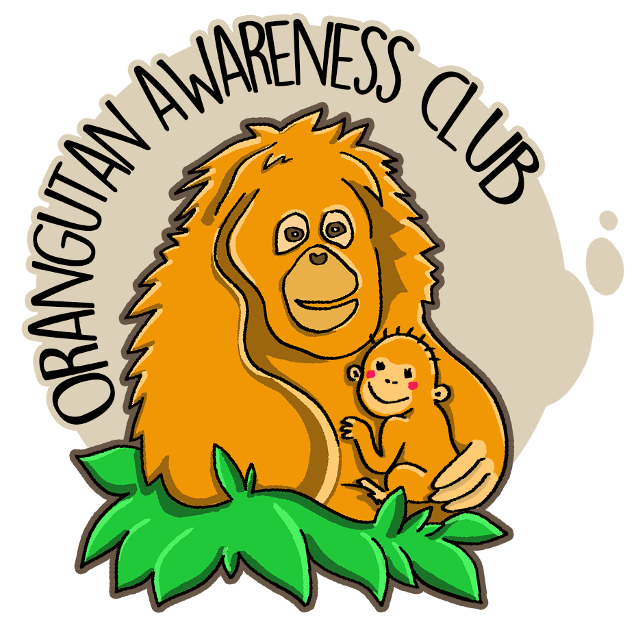 Orangutan Awareness Club