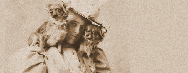 Edith Wharton_newsletter