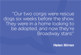 Our two corgis were rescue dogs six weeks before the show. They were in a home looking to be adopted, and now they're Broadway stars!