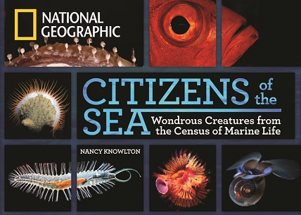 Citizens Sea Wondrous Creatures Census