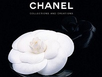 Chanel: Collections and Creations [Hardcover]
