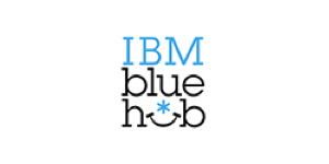 IBM Blue Hub