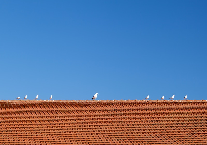 Chattanooga roofing contractors