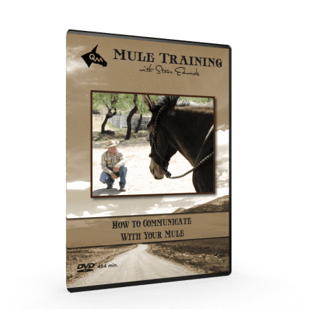 how to communicate, mule training techniques video cover