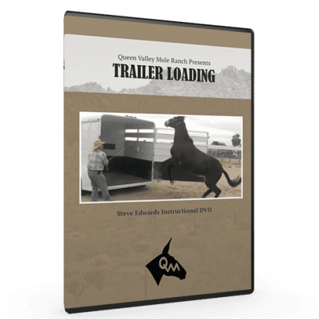 Steve Edwards Load Mules Into Trailers