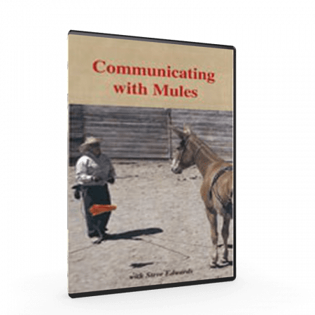 How to communicate with your mule taught by Steve Edwards, Mule Trainer