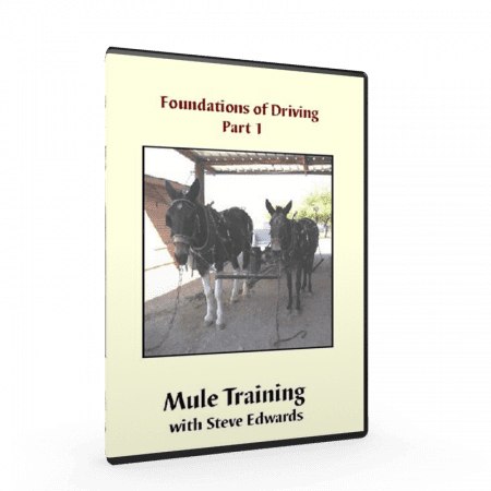 Steve Edwards and mule training, Foundation of Driving Mules