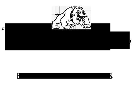 Sw school logo
