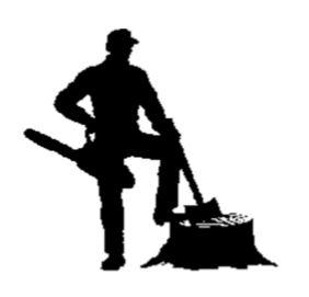 2019 lumberjack logo