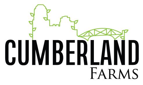 Cumberland farms black green