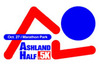 2013 logo use