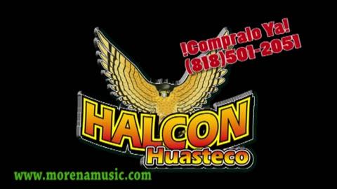 Los éxitos de Trio Halcon Huasteco - Videos de Música