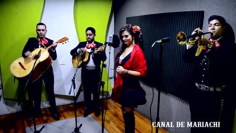 Rubi Rey - Que Tal Si Te Compro - Mariachi Channel