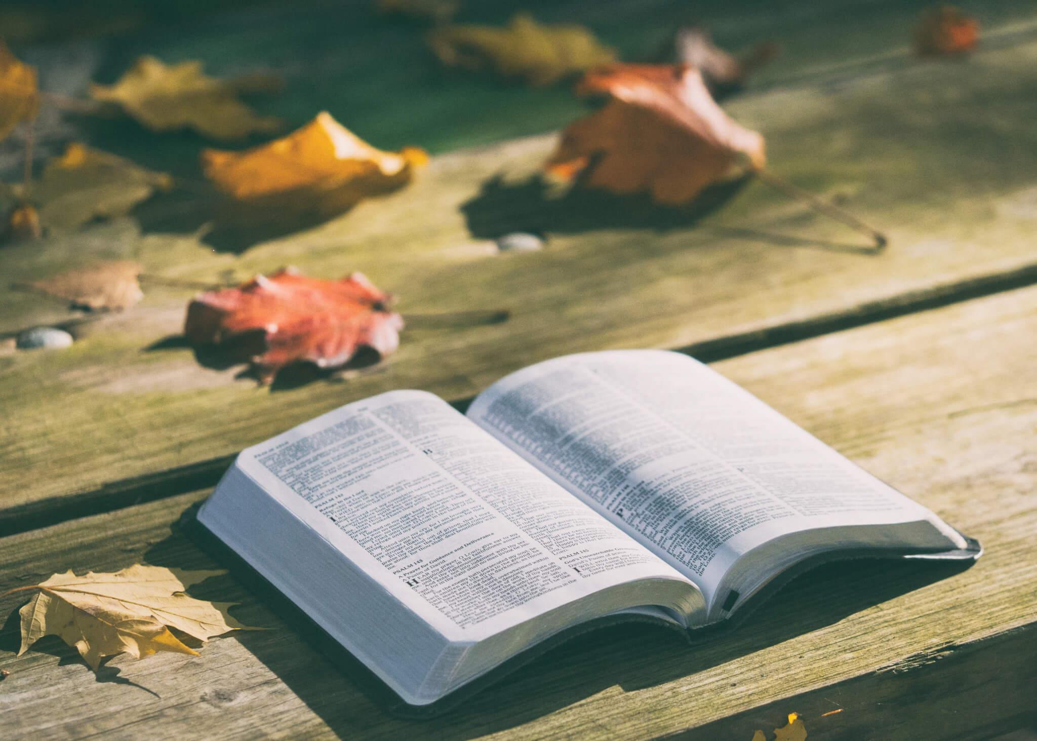 611 – Meditating on God's Word (Joshua 1:8)