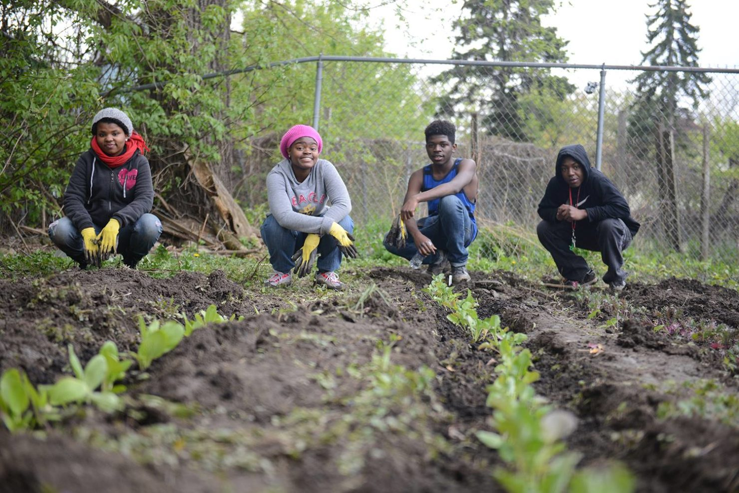 Teens grow greens