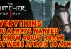 The Witcher III: Wild Hunt - Roach