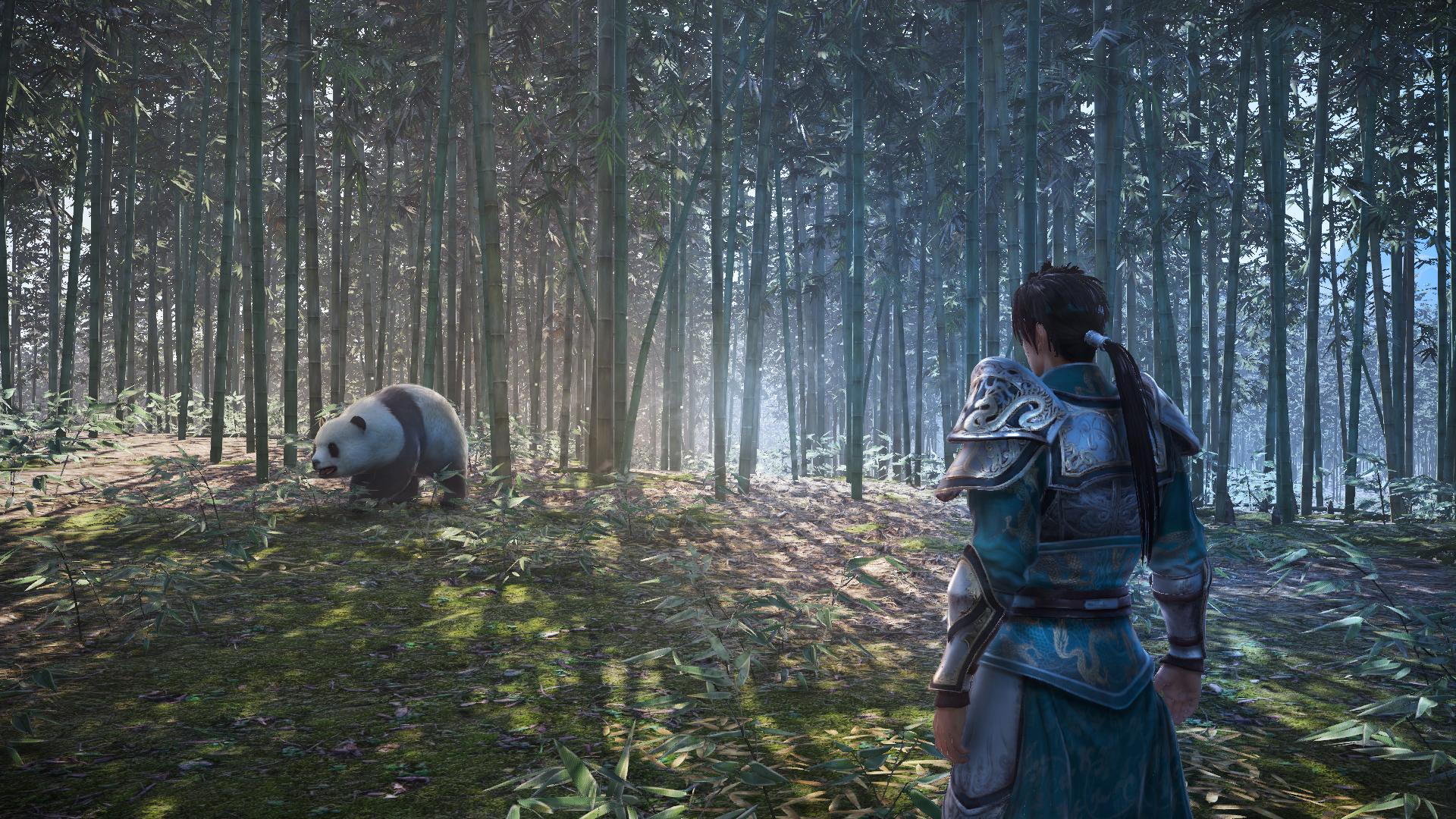 Dynasty Warriors 9 - panda