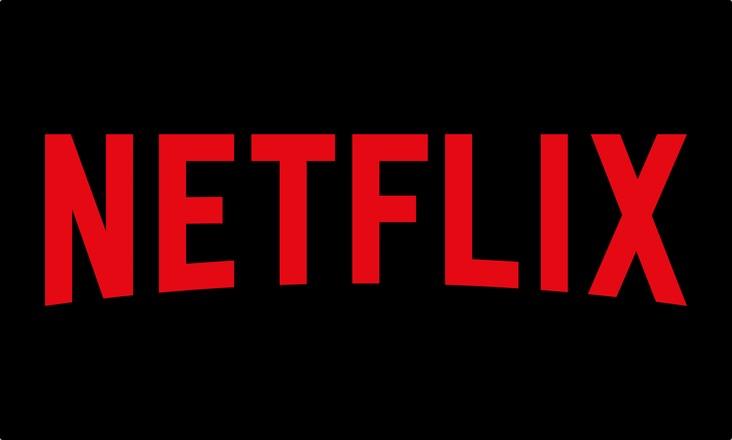 Netflix Logo Print CMYK
