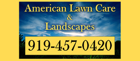 Website for American Lawn Care and Landscapes