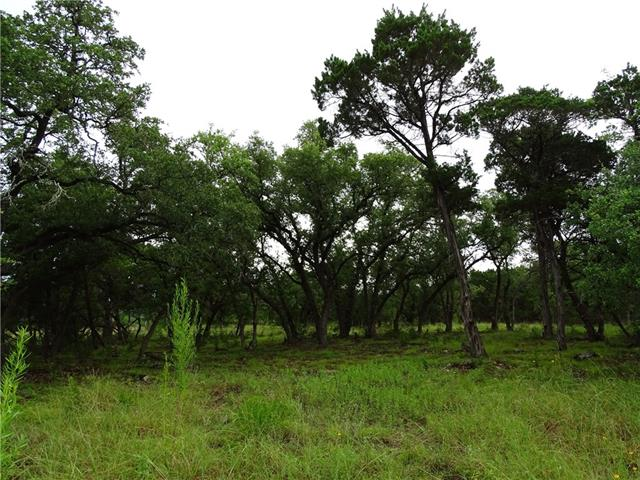 Several stands of mature live oaks
