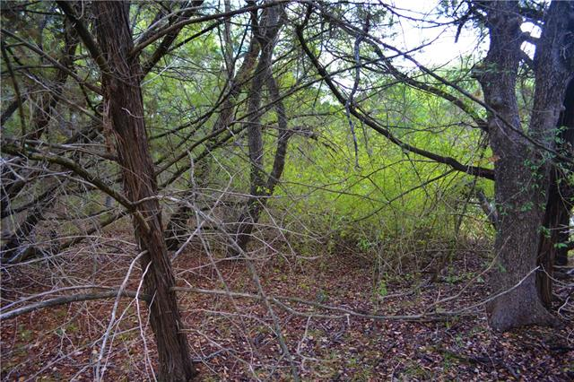 Plenty of variety in size and colors on this lovely wooded lot