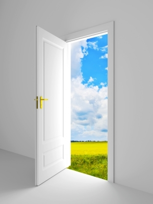 Doors like are there more of these & Are there more doors opened or closed right now in the entire world ...