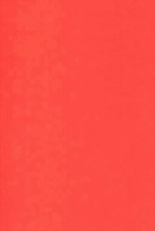 Salmon Color Paint