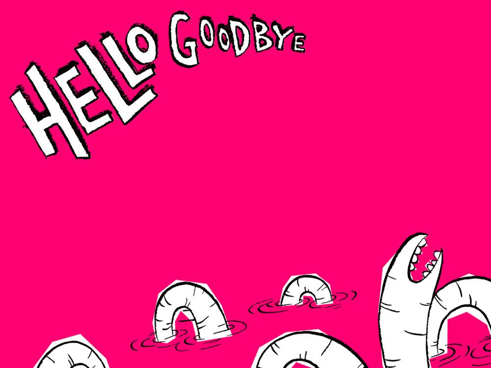 Beatles Hello Goodbye I Am The Walrus