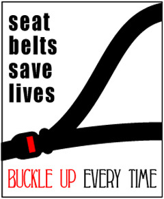 Seat Belts: Get the Facts
