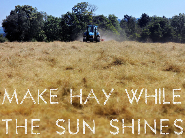 short story on make hay while the sun shines American english proverbs  make hay while the sun shines man does not live by bread alone a man is known by the company he keeps might makes right.