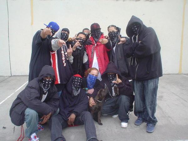 What Gang Were The Black Bandana Normal Sex Vidoes Hot
