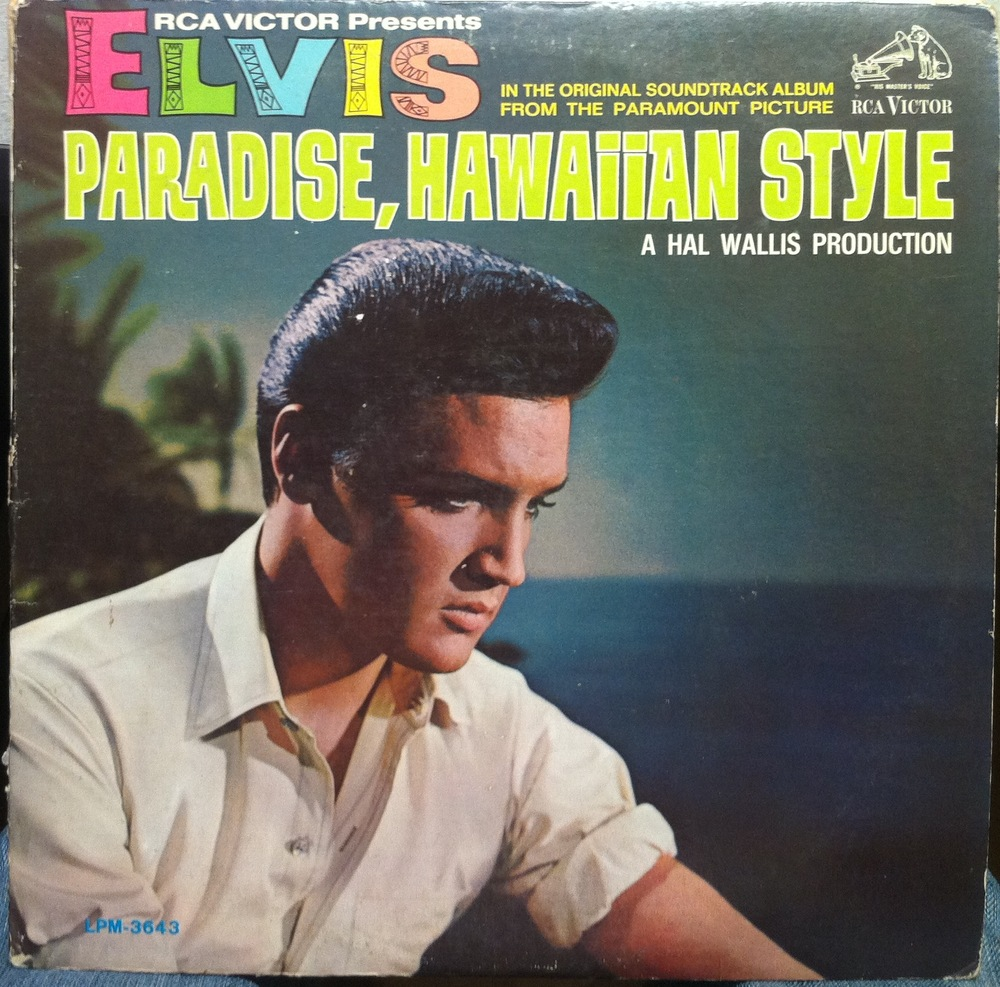 Paradise Hawaiian Style It S A Dog S Life