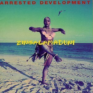 Arrested_development-_zingalamduni_-_album_cover
