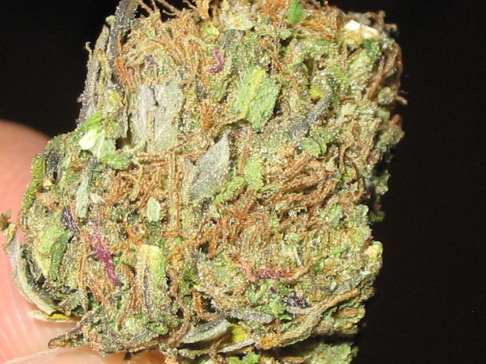 loud pack weed Gallery