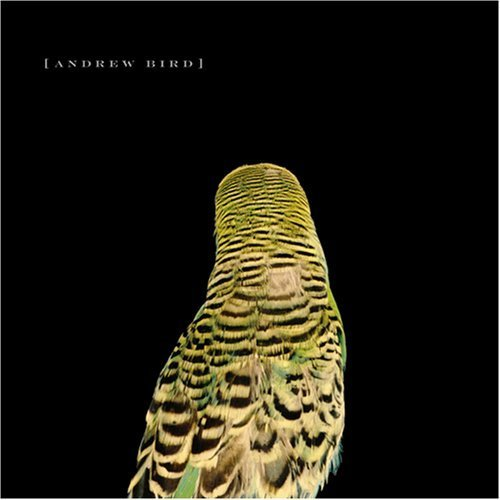 Andrew Bird Armchair Apocrypha Lyrics And Tracklist Genius