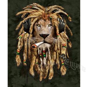 1358290695_162252_lion