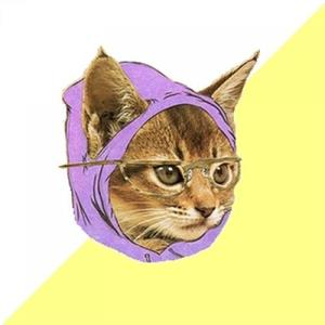 1358291398_163839_hipster-kitty